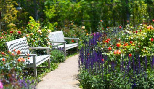 庭にあると便利なもの10選【ガーデニング・家庭菜園・車の掃除】用途いろいろ